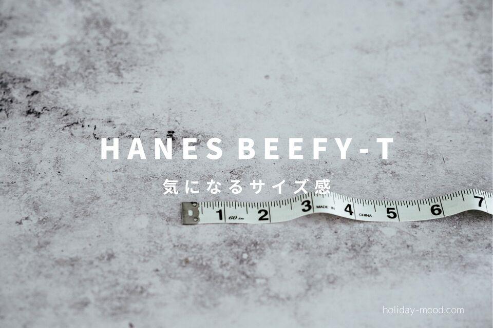 ヘインズビーフィーTのサイズ感