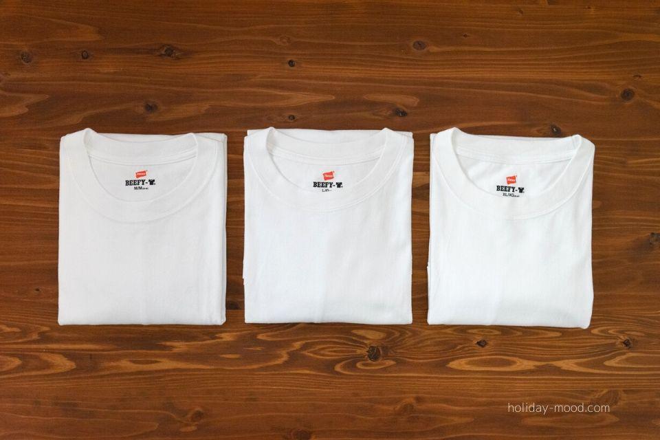 ヘインズビーフィーTシャツM.L.XL